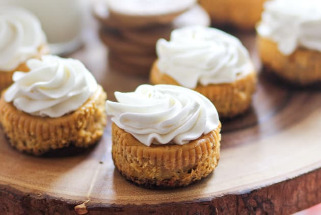 Mini Pumpkin Cheesecakes Photo