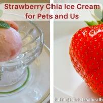 Strawberry Chia Ice Cream