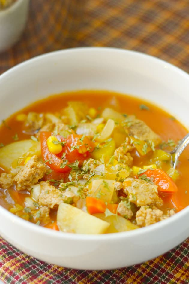 Gluten Free Instant Pot Vegetable Soup Pic