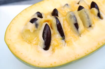 What is Pawpaw?