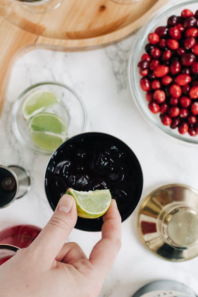Cranberry Gimlet Recipe Pic