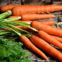 Karottenbutter