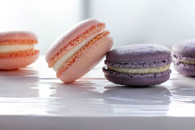 Rose & Lavender Macarons Photo