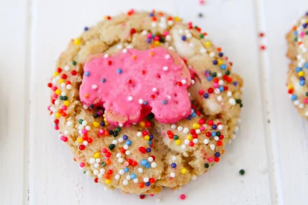 Animal Cracker Sugar Cookies Photo