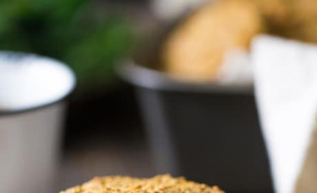 Paleo Breakfast Cookies Pic