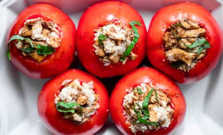 Tuna Stuffed Tomatoes Photo