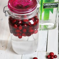 Make your own Cranberry Gin