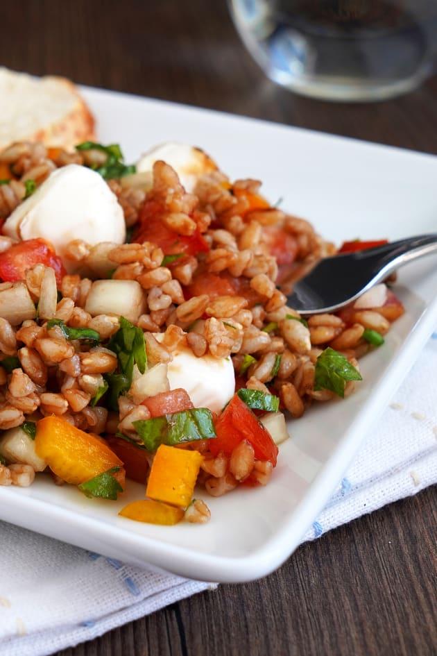 Italian Farro Salad Image