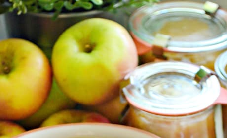 Instant Pot Applesauce Picture