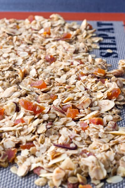 Apricot Granola Picture