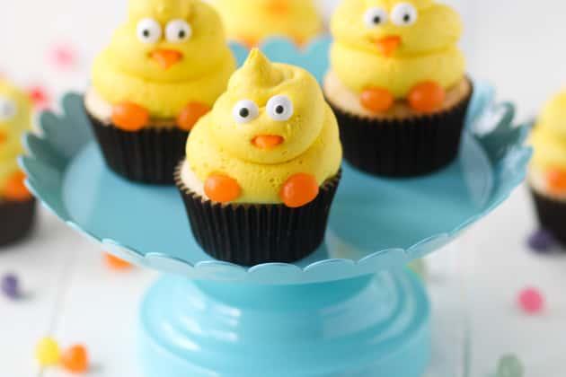 Spring Chick Cupcakes Photo