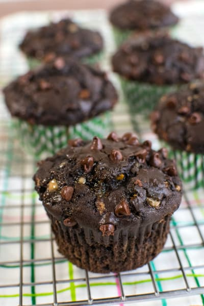 Double Chocolate Zucchini Muffins Picture
