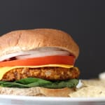 Spicy Black Bean Burger Image