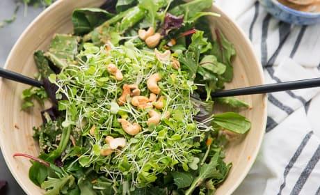Thai Cashew Chicken Salad Photo