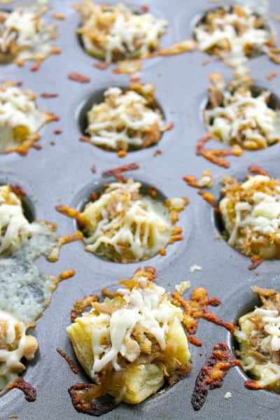 BBQ Shredded Pork Cups with Cheese Picture