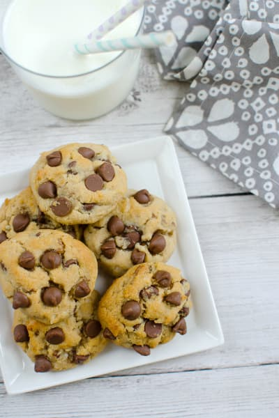 Paleo Chocolate Chip Coconut Cookies Picture