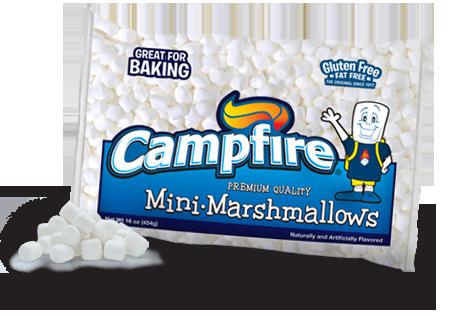 Campfire Mini-Marshmallows - Food Fanatic