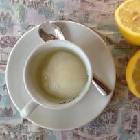 Zesty Lemon Sorbet