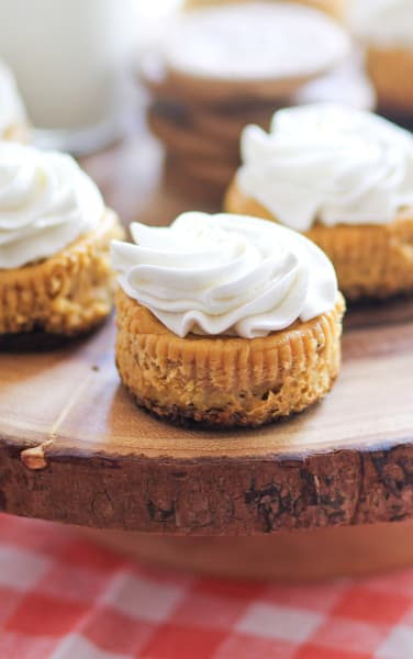 Mini Pumpkin Cheesecakes Picture