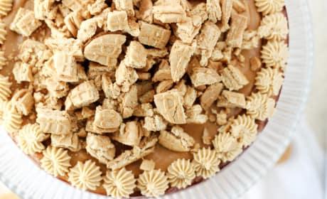 Nutter Butter Cheesecake Recipe