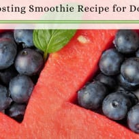 Immune-Boosting Smoothie Recipe for Dogs and People | Berry Smoothie Recipe