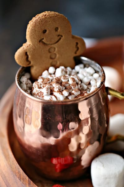 Gingerbread Hot Chocolate Picture