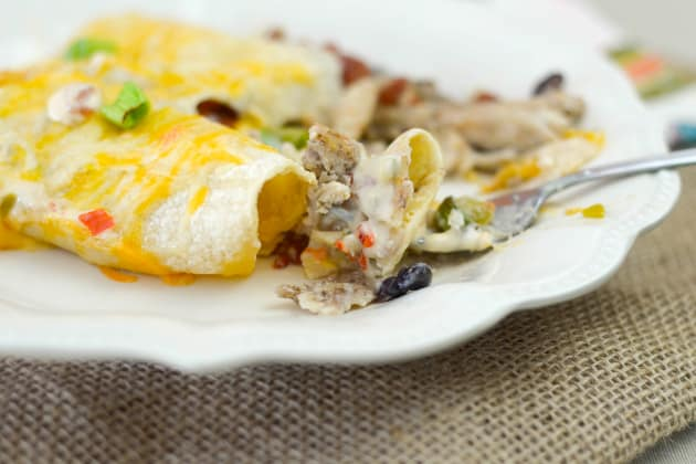 Gluten Free Cheesy Chicken Enchiladas Pic