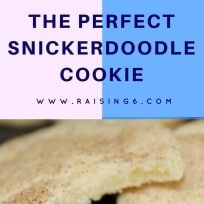 The Best Soft and Chewy Snickerdoodle Cookie Recipe