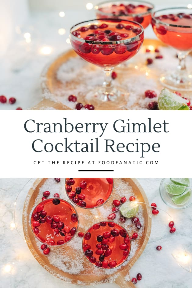 Cranberry Gimlet Cocktail Pic