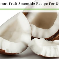 Best Healthy Smoothie Recipes for Dogs and People   Tropical Coconut Fruit Smoothie Recipe