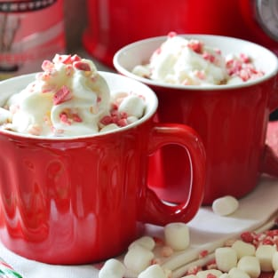 Boozy slow cooker peppermint hot chocolate photo
