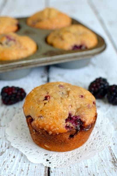 Blackberry Yogurt Muffins Image