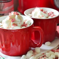 Boozy Slow Cooker Peppermint Hot Chocolate Recipe
