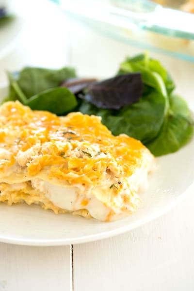 White Chicken Lasagna Pic