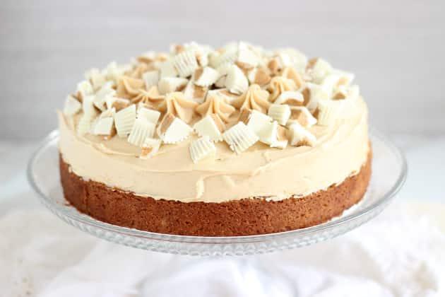 White Chocolate Peanut Butter Cheesecake Photo