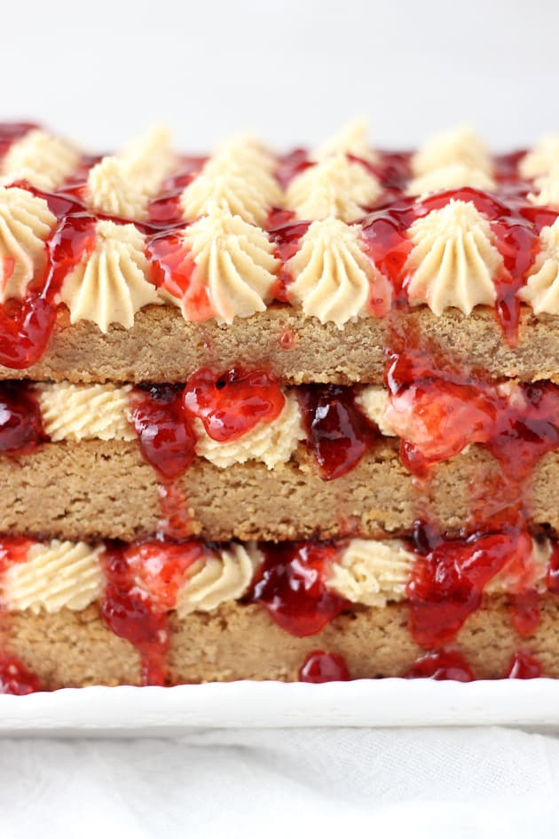 Peanut Butter & Jelly Torte Picture