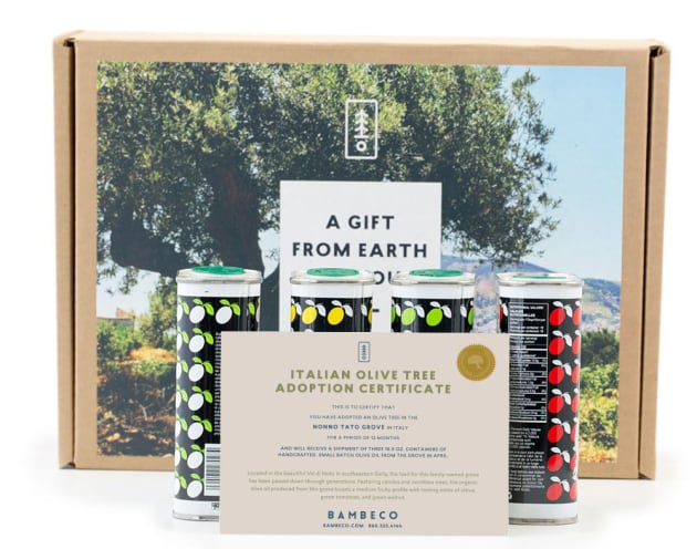 Bambeco Olive Tree Gift