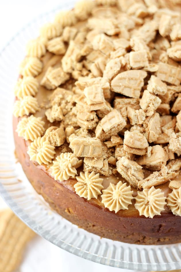 Nutter Butter Cheesecake Picture