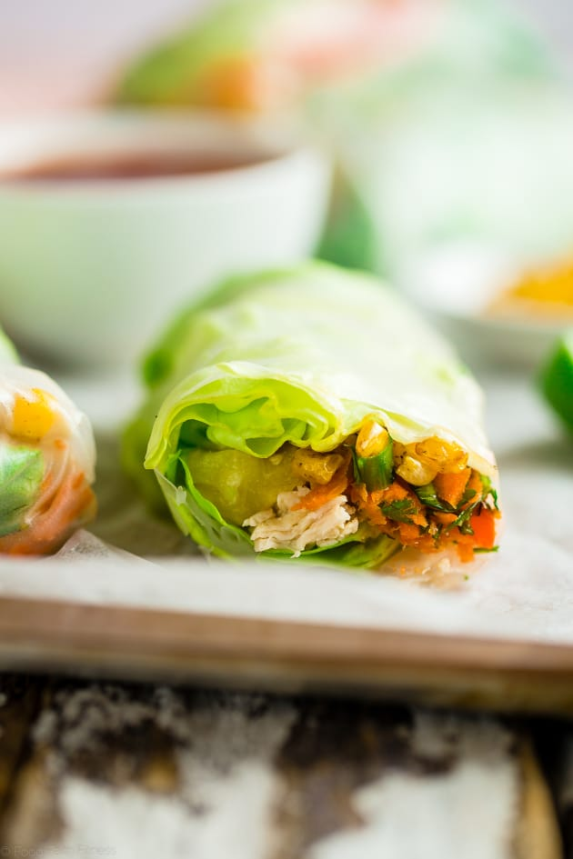 BBQ Chicken Summer Rolls Image
