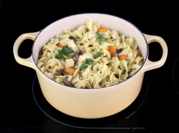 Chicken Noodle Soup Photo