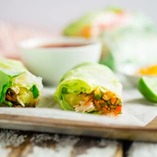 Bbq chicken summer rolls photo