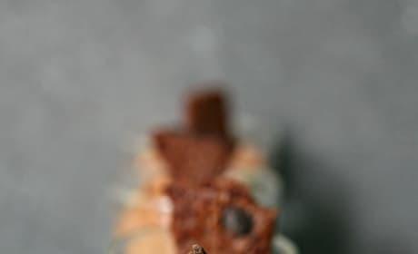 Brownie Brittle No Bake Mini Cheesecakes Image