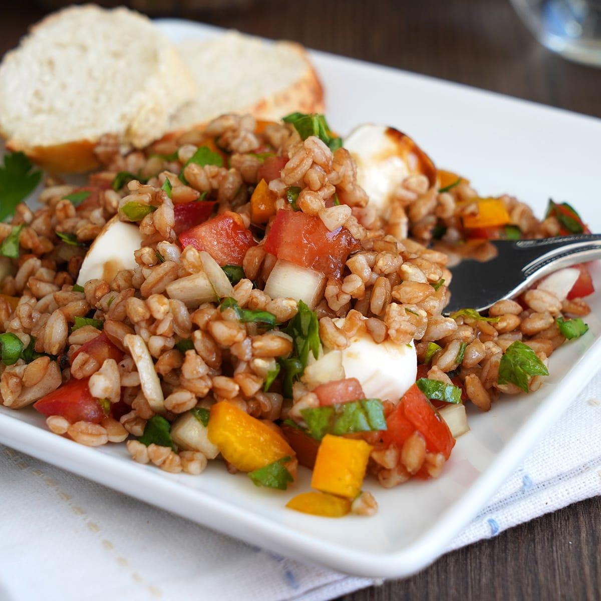 Italian Farro Salad Recipe - Food Fanatic