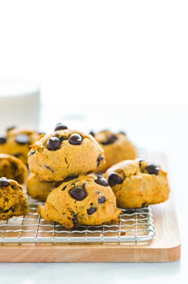 Gluten Free Chocolate Chip Pumpkin Cookies Image