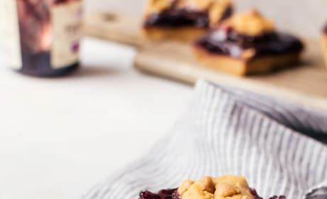 Peanut Butter and Jelly Bars Picture