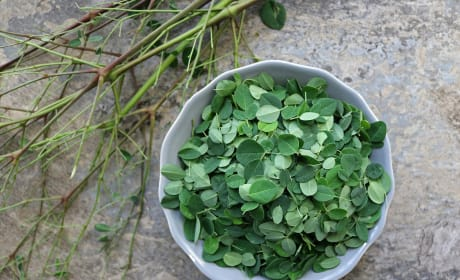 Potato Salad with Moringa Leaves Image