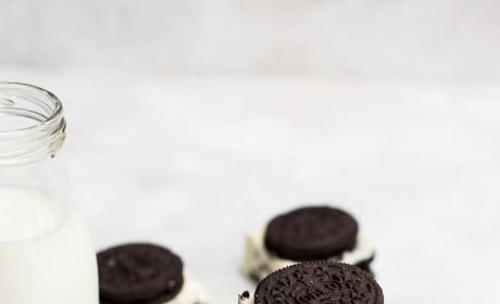 Oreo Fudge Picture