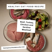 Beef, Turkey, Chicken and Sardine Meatloaf for Cats