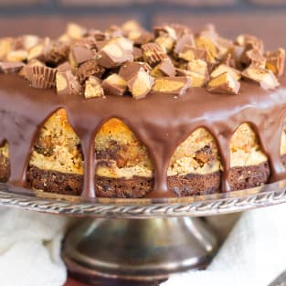 Peanut butter cup brownie cheesecake photo