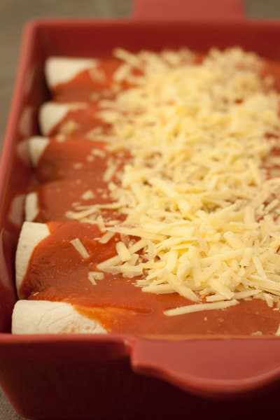 Enchilada Sauce Photo